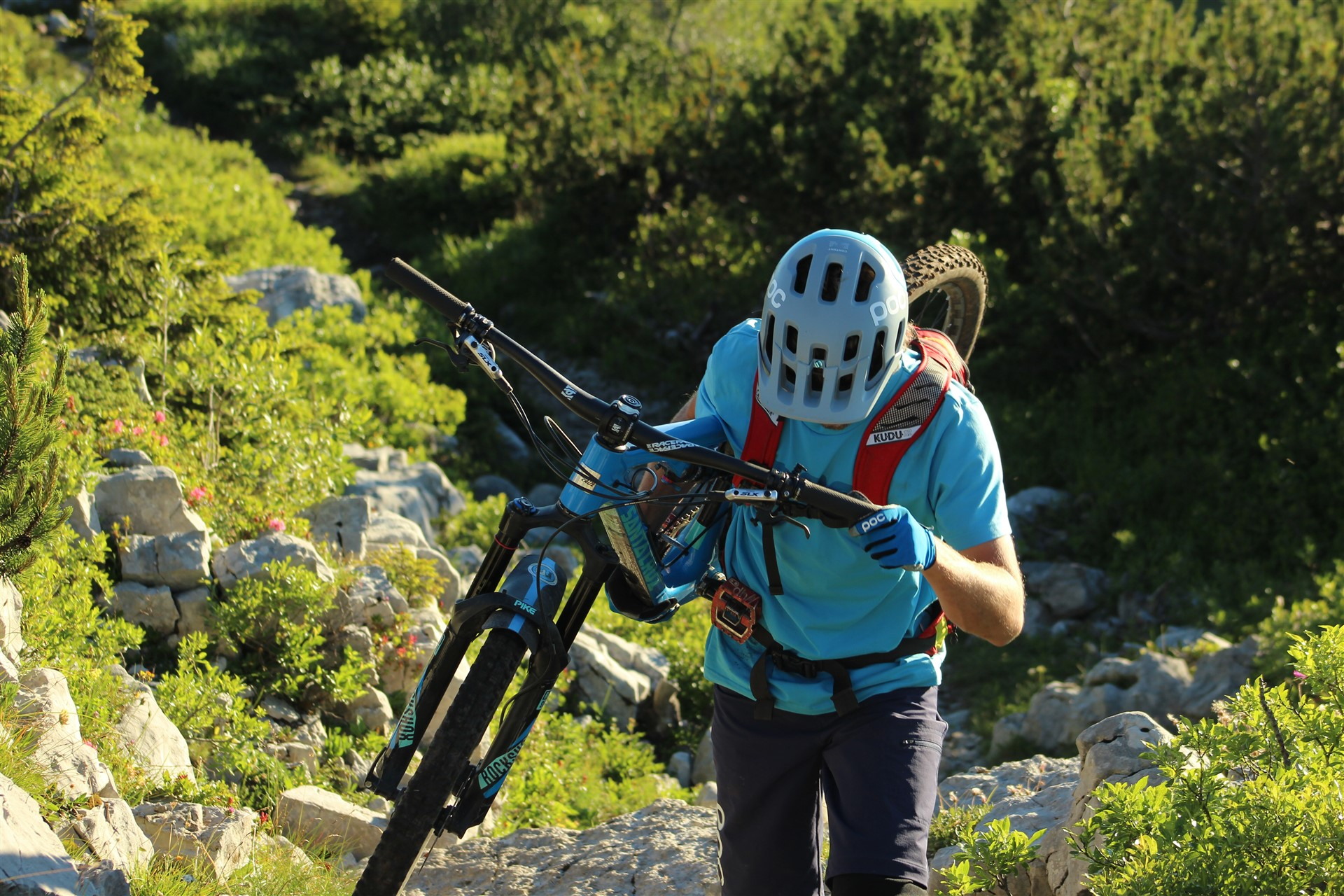 Mountain Bike in Paganella Trentino